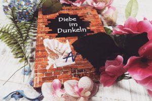"""Rezension zu """"Diebe im Dunkeln"""" von Dana Menzel"""